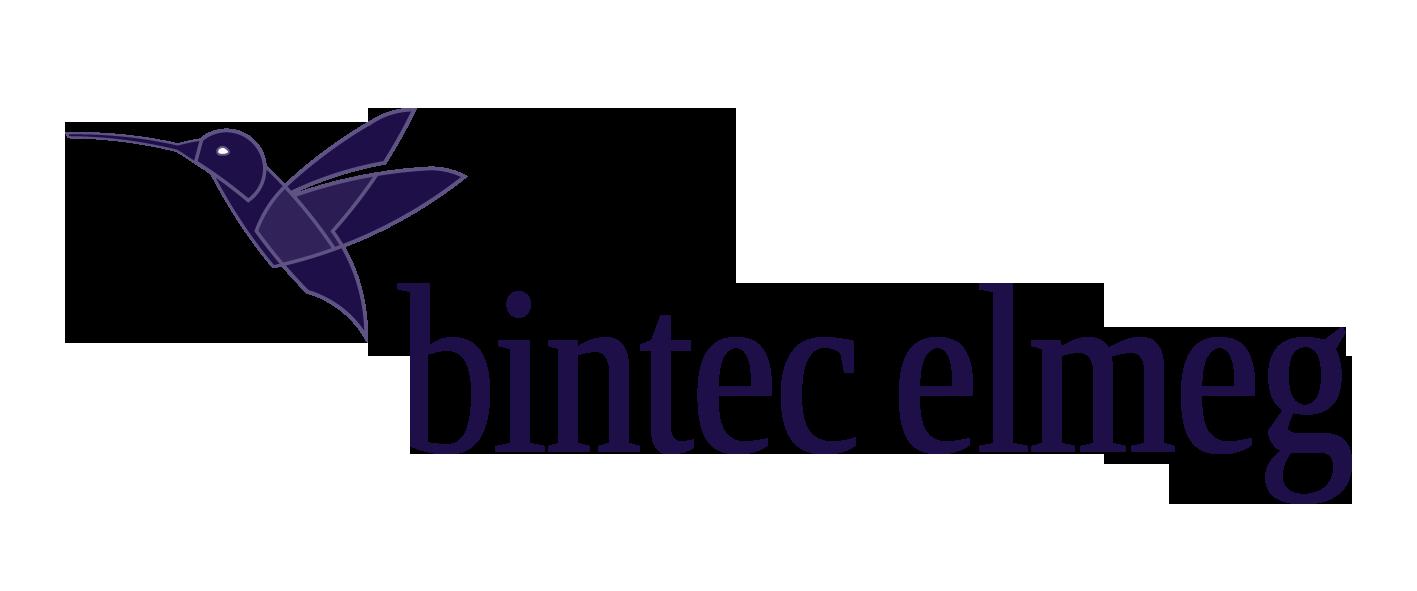 bintec elmeg Mobility Lösungen